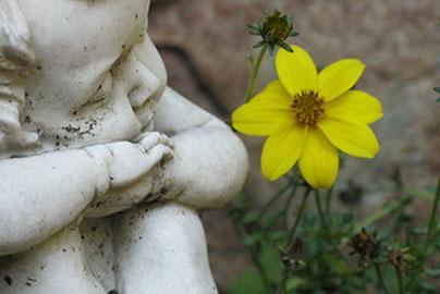 Kleiner Engel mit Blume